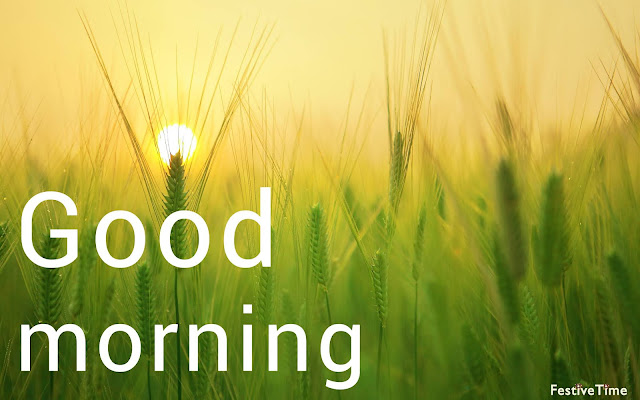 Top 10 Hd Sunrise Good Morning Images with quotes [ Happy Morning Image]