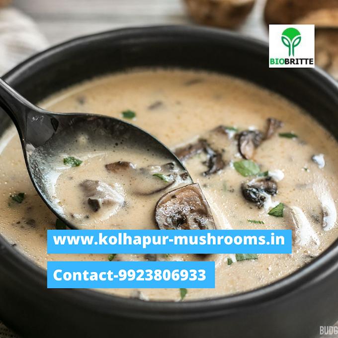 Mushroom  | cream  | soup |
