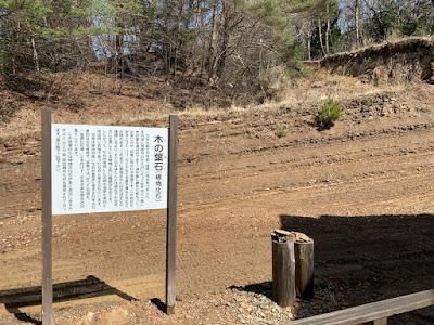 木の葉化石園前の地層