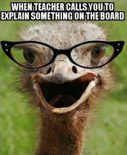 Funny pics - When teacher calls you