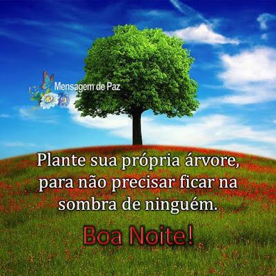 Plante sua própria árvore,   para não precisar ficar   na sombra de ninguém.  Boa Noite!
