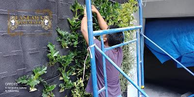 Jasa pembuatan vertical garden jakarta