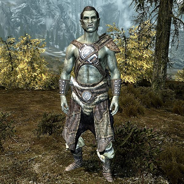 Skyrim old orc