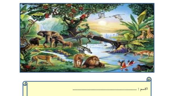 مراجعة علوم النباتات كائنات حية فصل أول صف أول