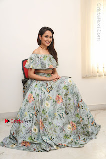 Actress Pragya Jaiswal Stills in Floral Dress at turodu Interview  0168.JPG