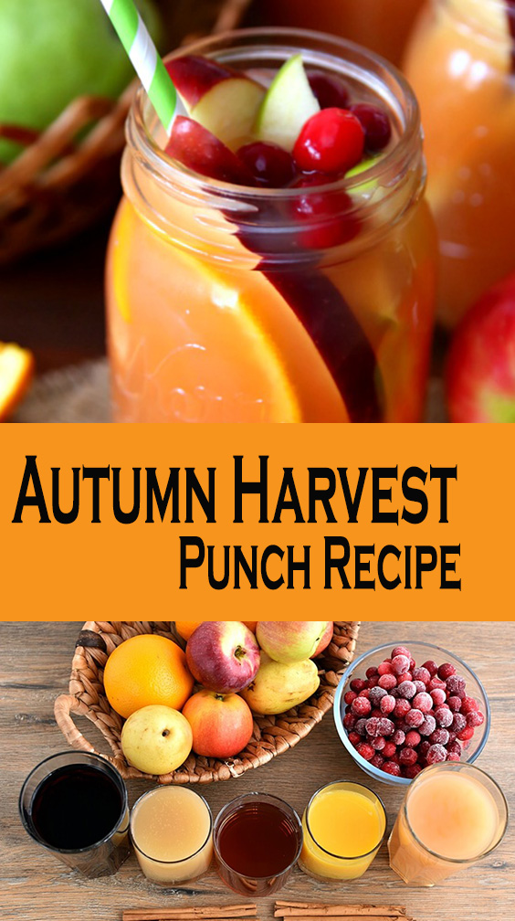 Autumn Harvest Punch Recipe