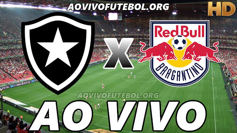 Assistir Botafogo vs Bragantino Ao Vivo HD