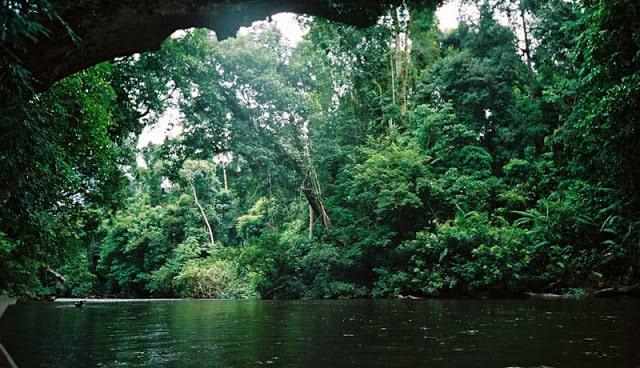 منتزه تامان نيجارا الوطني