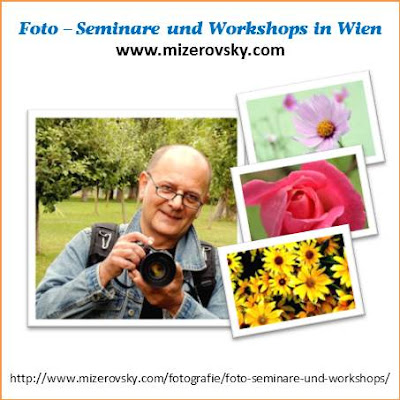 Fotolehrgang Wien Blumengärten Hirschstetten