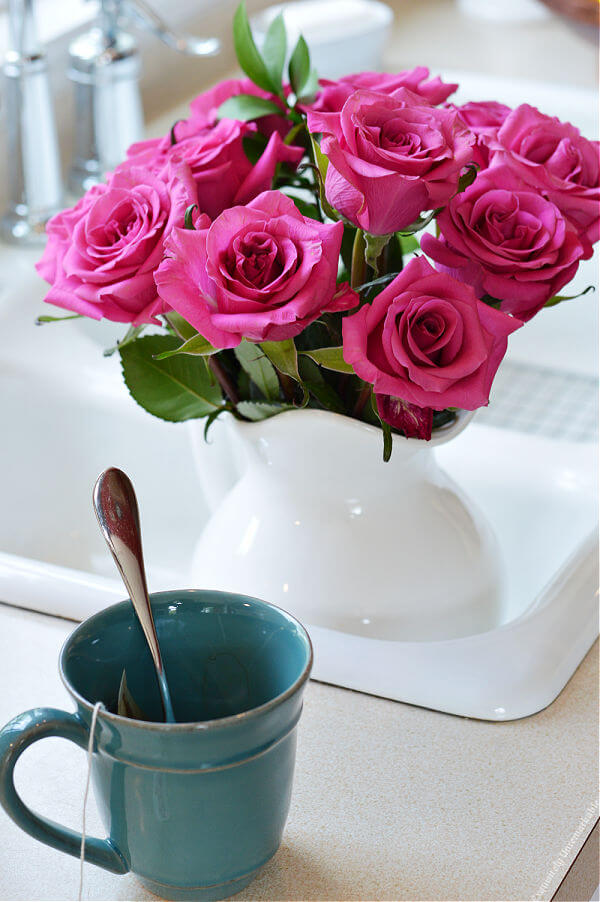 Hot Pink Roses In Sink
