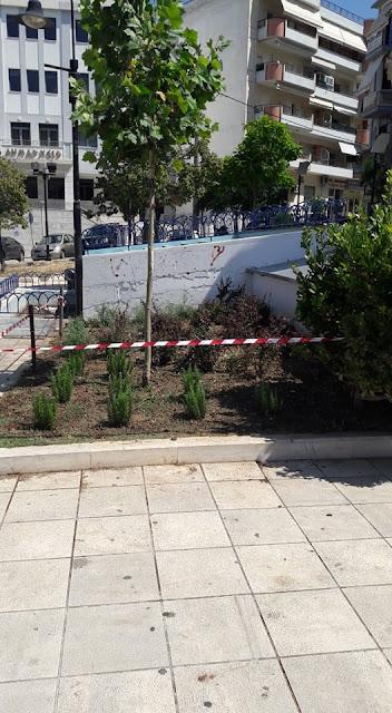 """Ήγουμενίτσα: """"Φυτεύουμε καλλωπιστικούς θάμνους, μη τους καταστρέφετε"""", λέει ο δήμος Ηγουμενίτσας"""