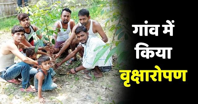 पर्यावरण दिवस पर छात्र युवा संघर्ष समिति ने गांव में किया वृक्षारोपण
