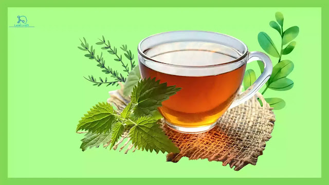 5 Herbal Teas that You Must Try For Good Health