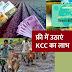 फ्री में बनवाएं KCC, जानें- आयु-सीमा और ज़रूरी दस्तावेज़