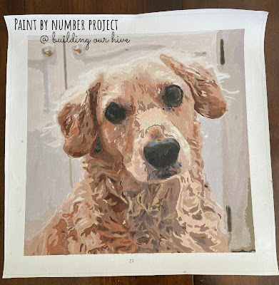Paint by Number Project, featured at Funtastic Friday!