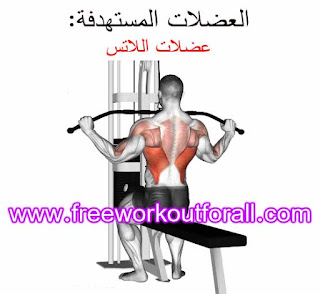 افضل تمارين عضلة الظهر للمبتدئين بالفيديو