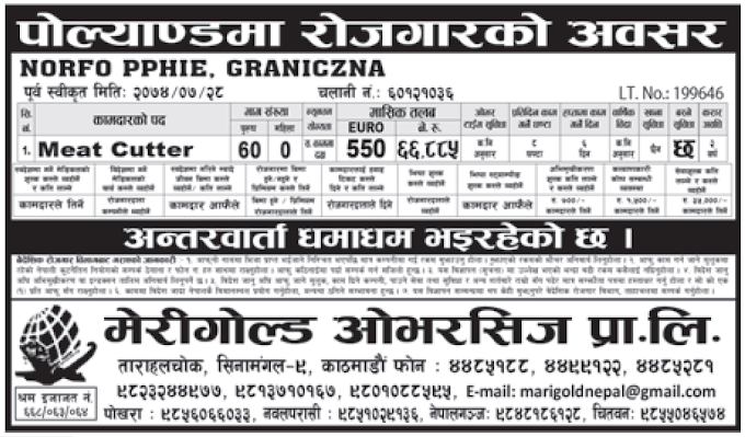 Jobs in Poland for Nepali, Salary Rs 66,885