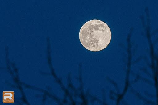 Mēness ar koka zariem peregejā