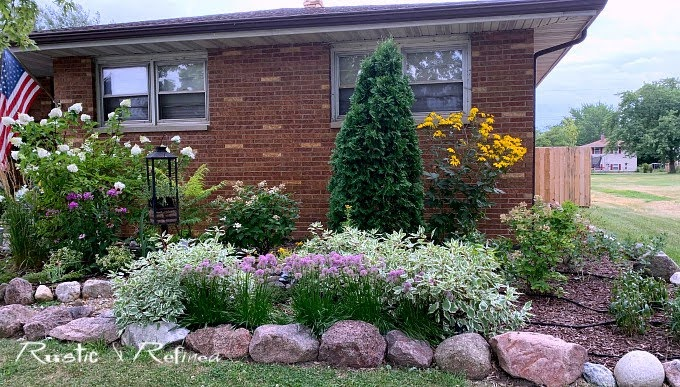How to use Trees or plants for more privacy in your home