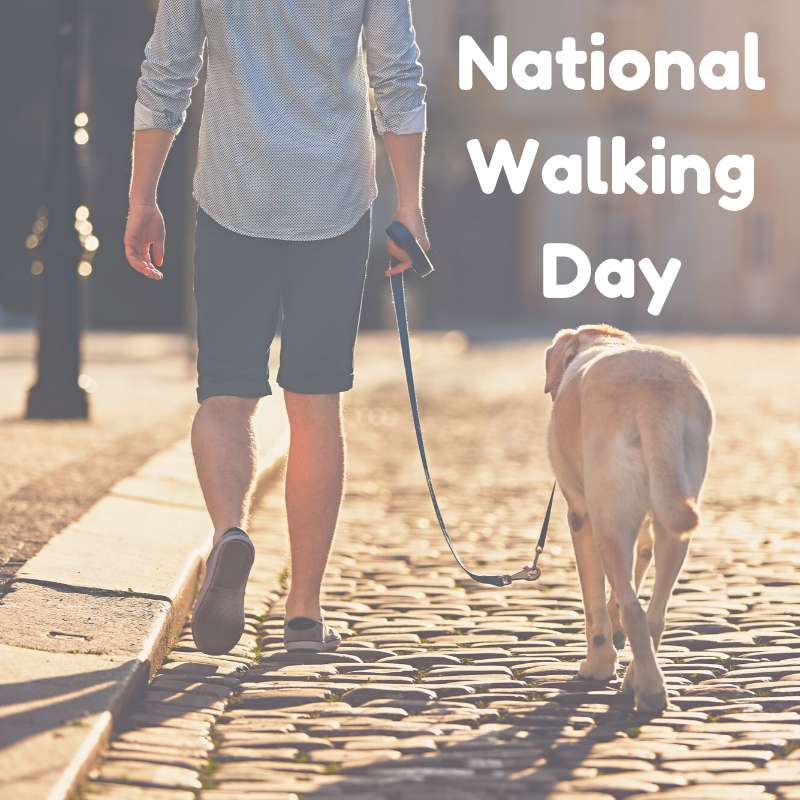 National Walking Day Wishes Lovely Pics