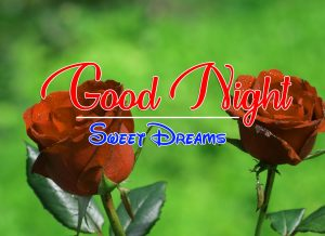 Beautiful Good Night 4k Images For Whatsapp Download 202