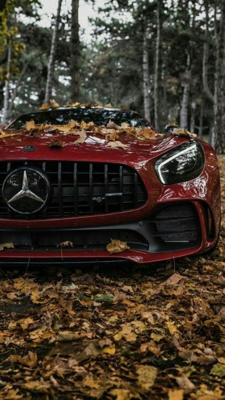 auto rossa sportiva