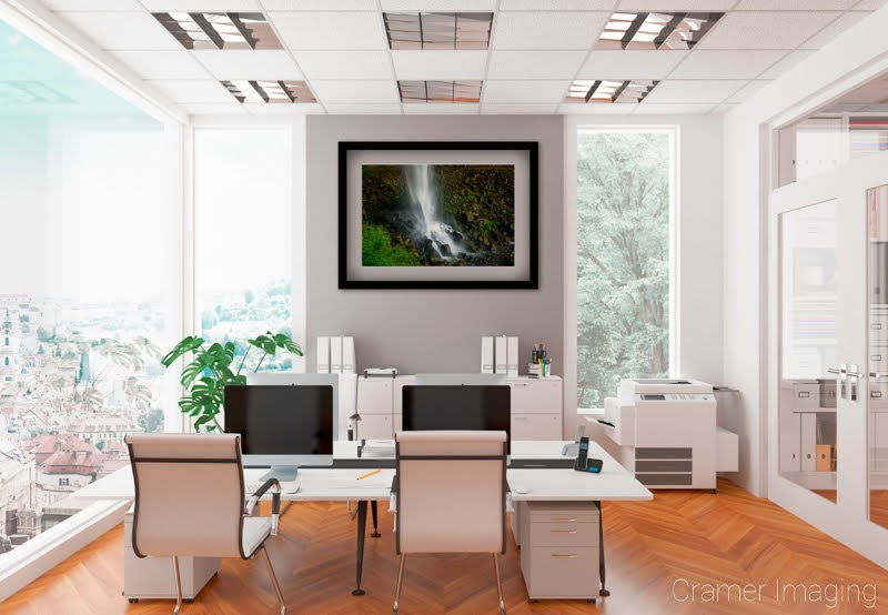 "Cramer Imaging's staged photo of ""Moss on the Rocks"" on the wall of an office space"
