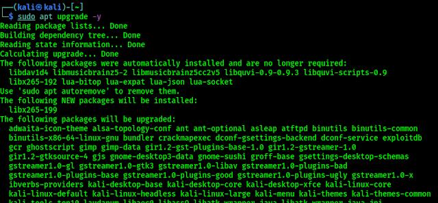 upgrading Kali Linux