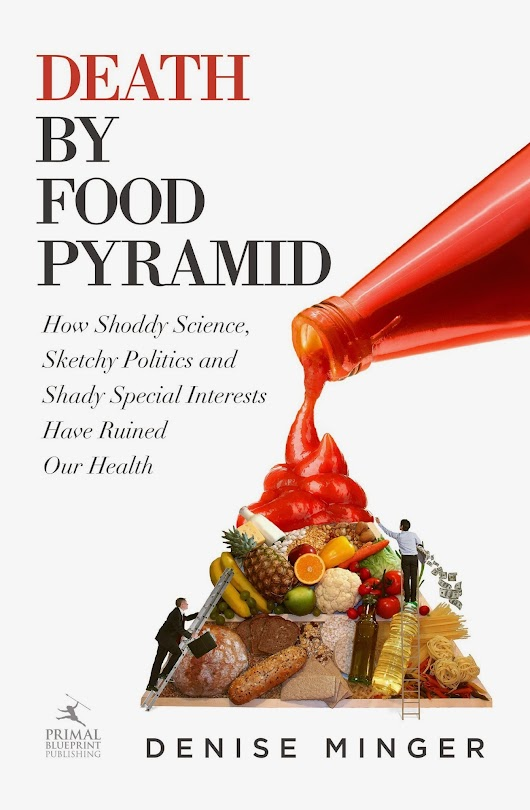Denise Minger: Death By Food Pyramid or Saved By Food Pyramid? | Healthy Longevity