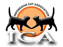ICA Cabang Jambi Gelar  Seminar Perawatan Kucing Dan Standart Breed.