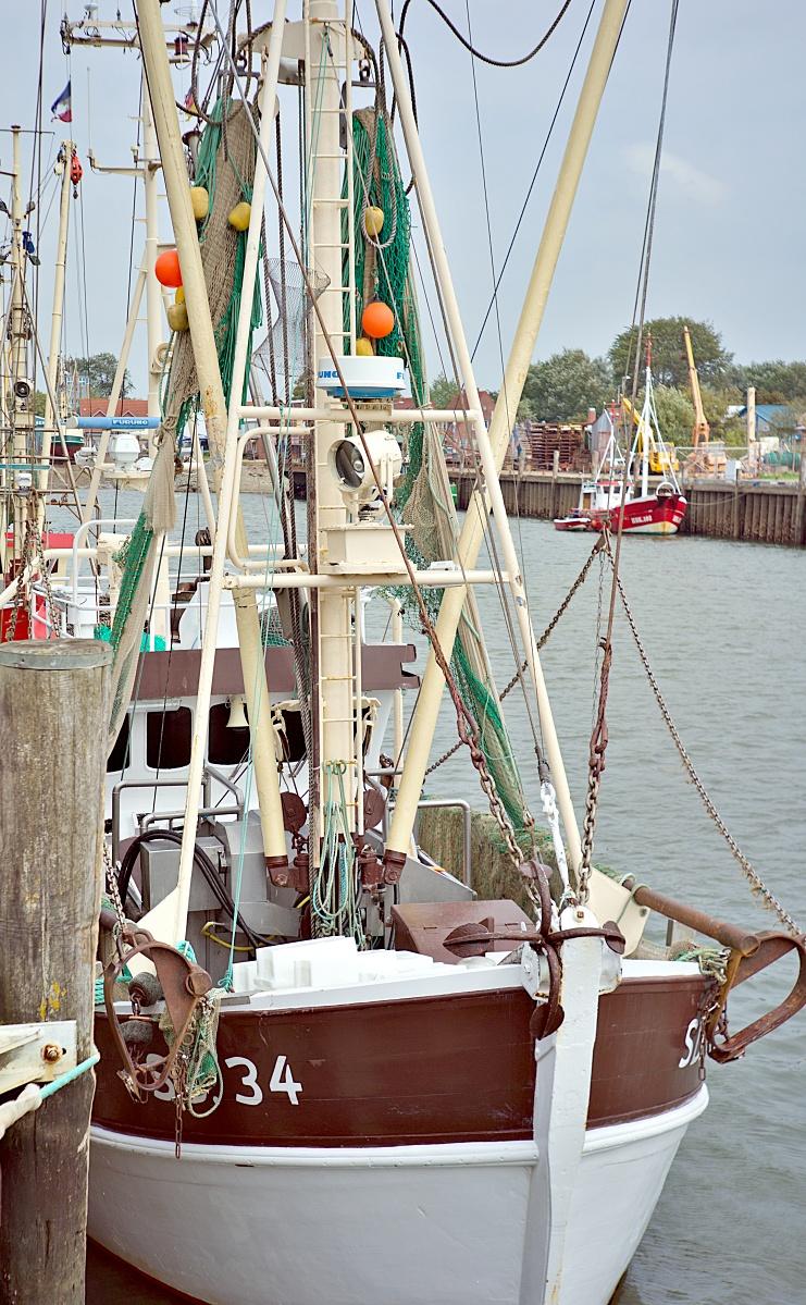Im Büsumer Hafen (1)