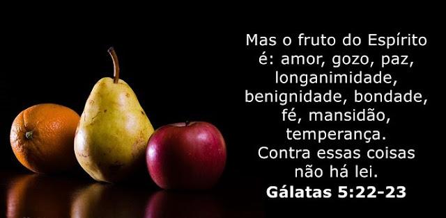 Mas o fruto do Espírito é: amor, gozo, paz, longanimidade, benignidade, bondade, fé, mansidão, temperança. Contra essas coisas não há lei.
