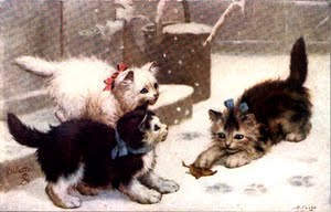 ANIMALS ,صور حيوانات, جميلة رسم,صور حيوانات رسم, Animals Wallpapers, Beautiful And Amazing Animals, صور
