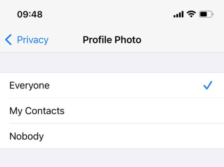 You can easily hide your profile pic from users.