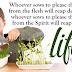 Eternal Life   Galatians Bible Quotes   Sows