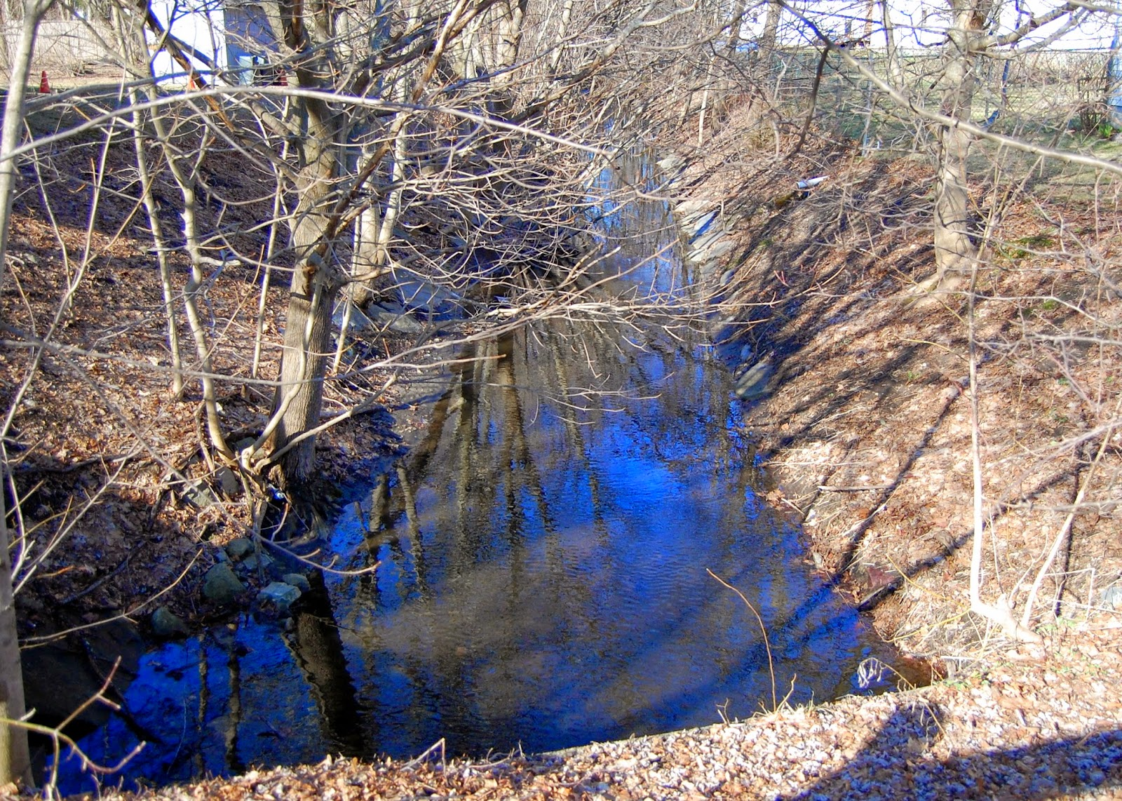 feeder stream to Mine Brook