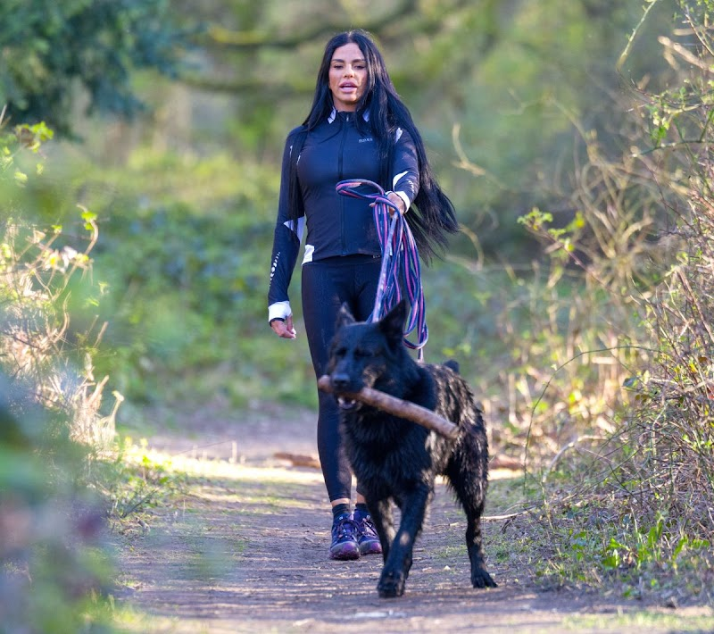 Katie Price Clicked Outside with Her Dog at a Park in Brighton 6 APr-2020
