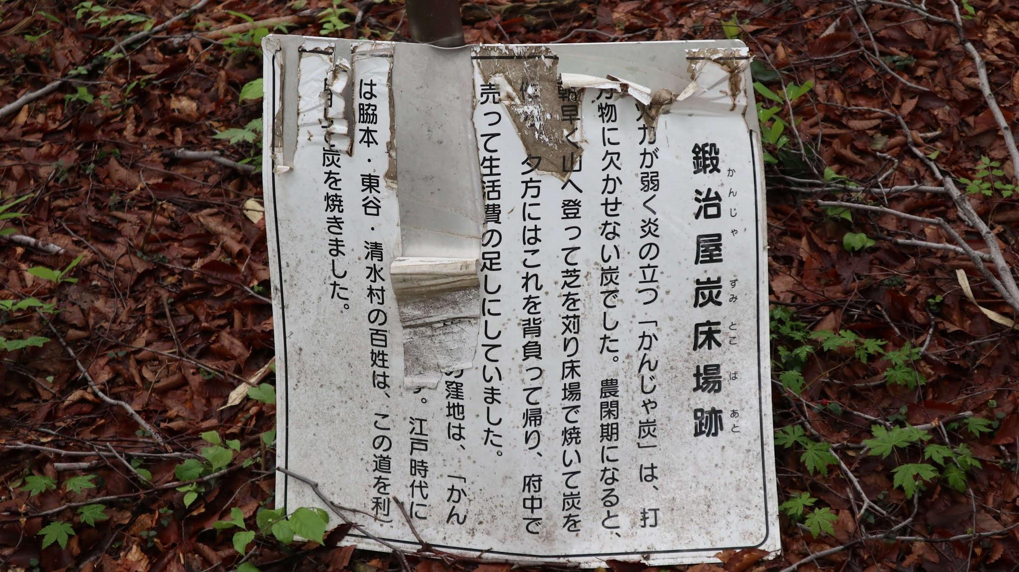 ホノケ山14