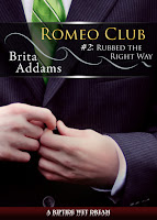 Review: Rubbed the Right Way by Brita Addams