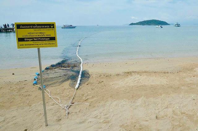 "<a href=""http://vionm.com/"">Thailand</a> <a href=""http://vionm.com/things-to-do-in-bangkok-thailand/thailandhoneymoon-explore-the-beauty-of-koh-samui/"">Beach</a>: Testing Times On <a href=""http://vionm.com/"">Thailand</a>'s <a href=""http://vionm.com/things-to-do-in-bangkok-thailand/thailandhoneymoon-explore-the-beauty-of-koh-samui/"">Beach</a>es"