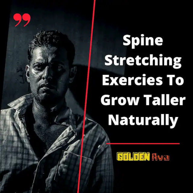 Spine Stretching Exercies To Grow Taller Naturally