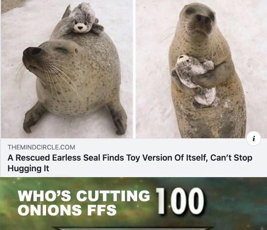 Animals are so wholesome