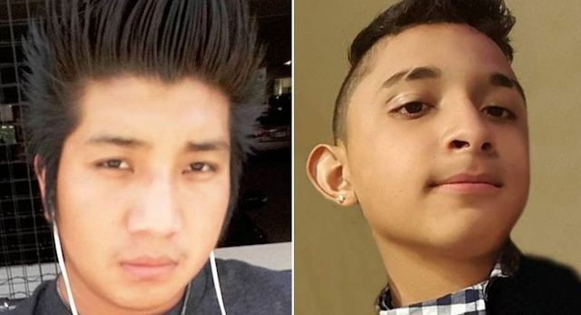 MS-13 gang members, including 10 illegal immigrants, charged in deaths of Virginia teens