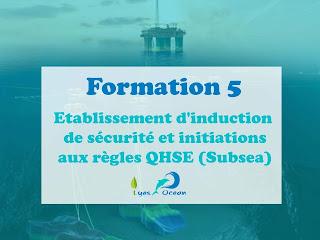 Formation 5  Etablissement d'inductions de sécurité aux règles QHSE  (Subsea)
