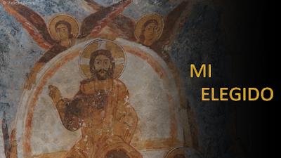 Evangelio según san Mateo 12, 14-21: Mi Elegido