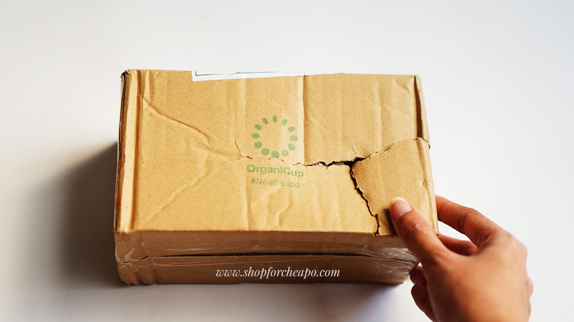sustaination review unboxing