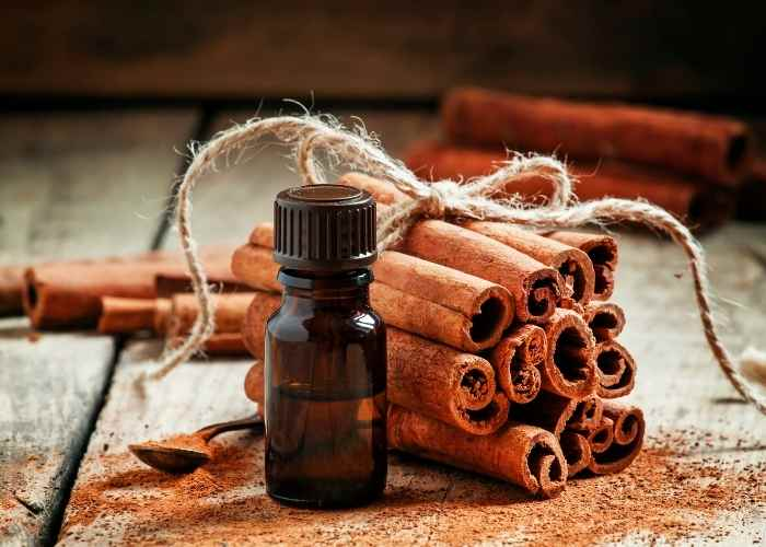 Pumpkin Spice Essential Oil Blend + Fall DIY Bath and Body Recipes