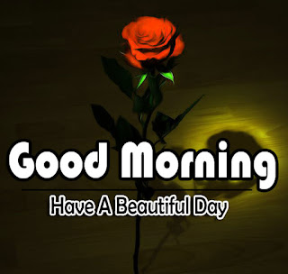 New Good Morning 4k Full HD Images Download For Daily%2B59