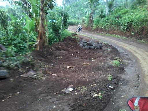 jalan menuju desa tirtoyudo