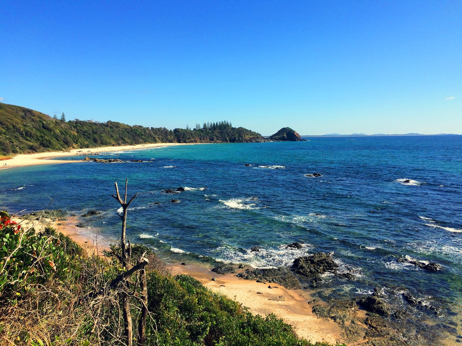Shelley Beach Port Macquarie